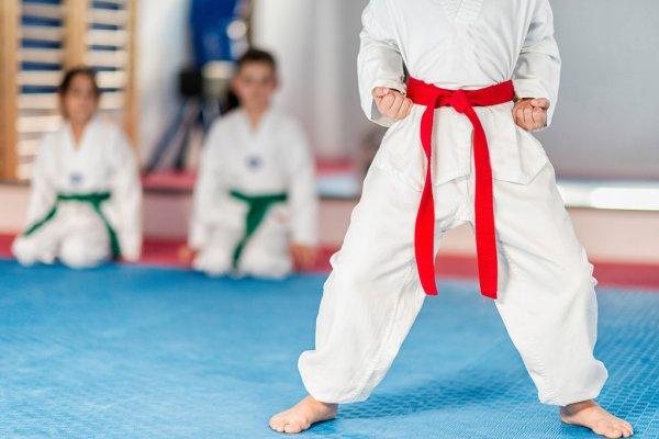 singapore taekwondo academy